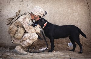 A soldier kissing his dog