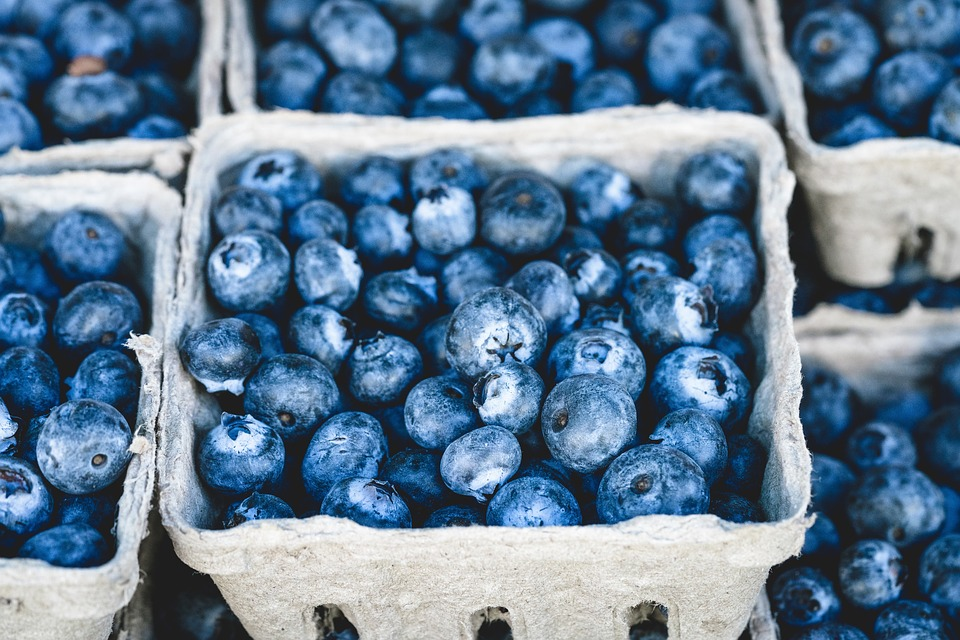 Blueberries in a basket for staying healthy while moving